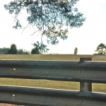 """Guardrail at… """"Home – Home on the Range…"""""""