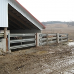 Gates built from guardrail are made to handle what cattle can dish out.