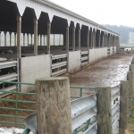 Five Guardrail Gates