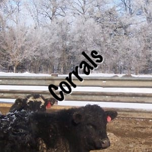 Guardrail works great to build corrals