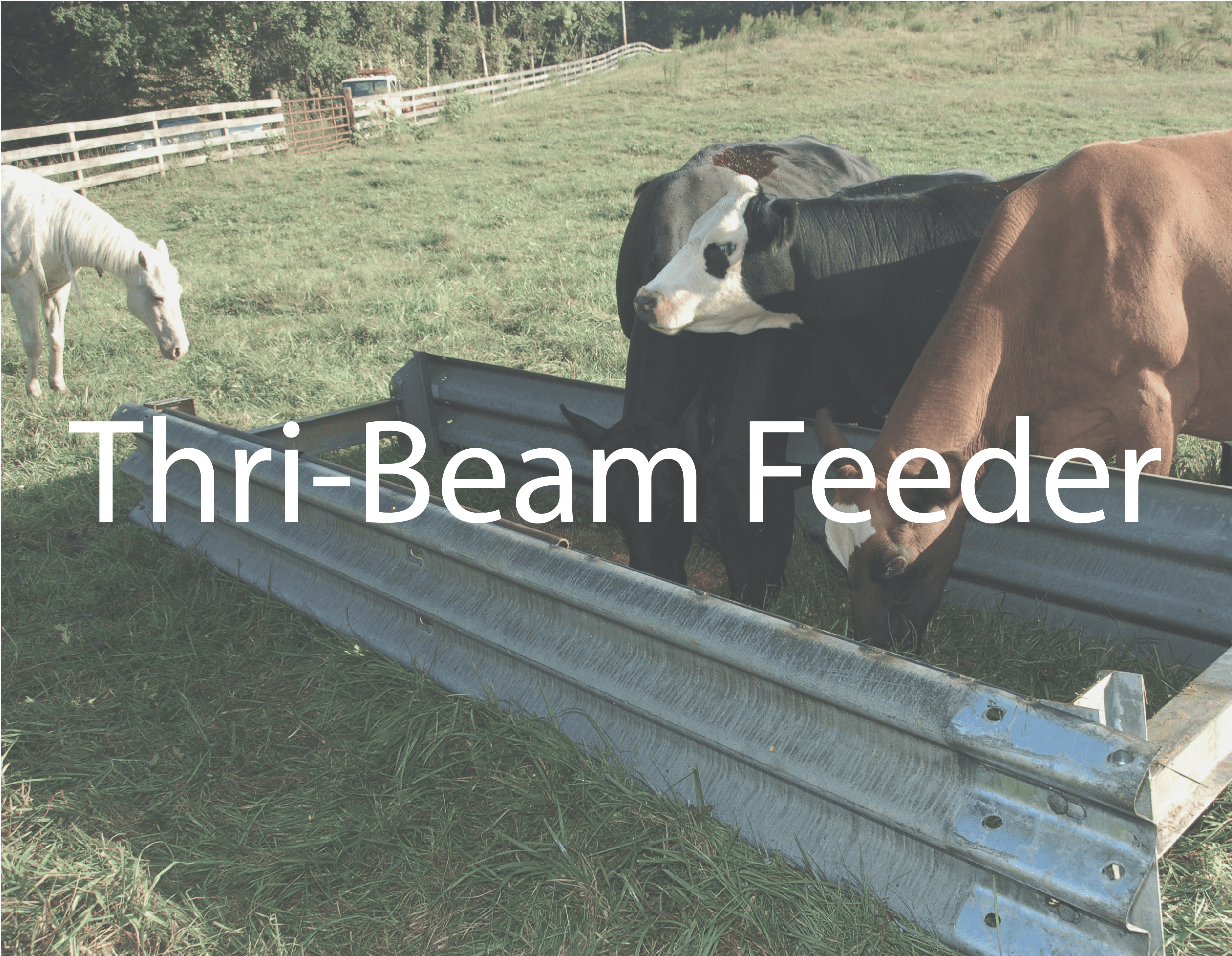 Thrie Beam for sale